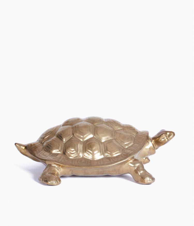 tortue dorée terracotta caroline