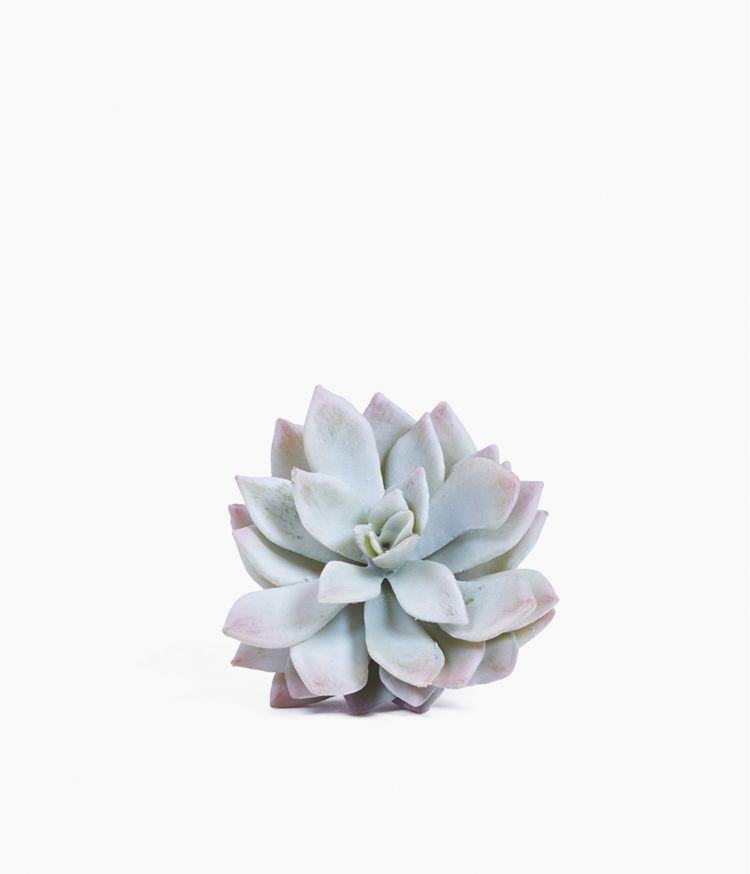 Plante artificielle