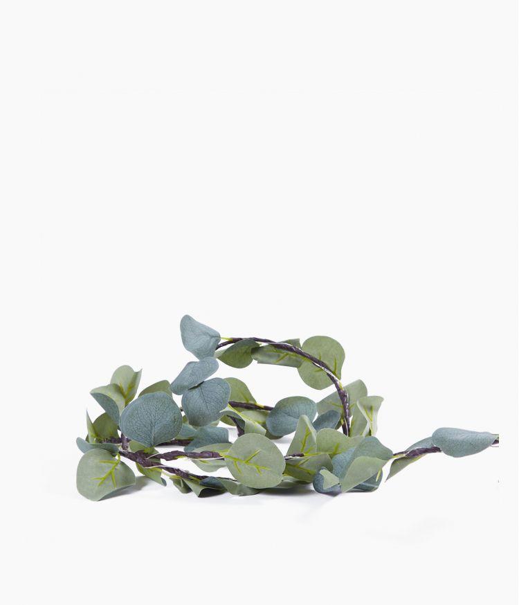 Guirlande lumineuse feuillage Eucalyptus 20 led