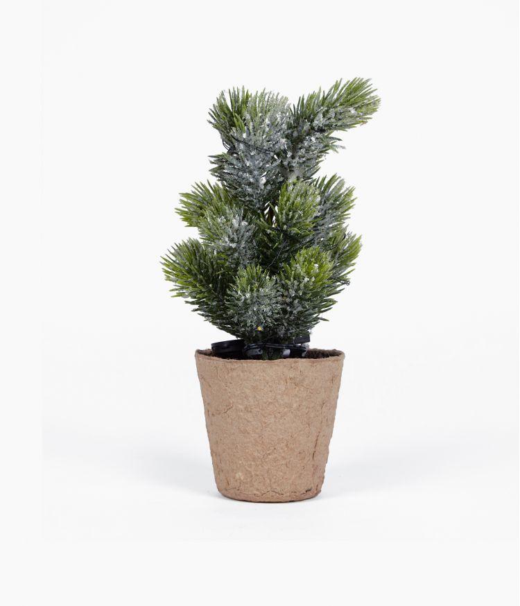 Mini Sapin Branche
